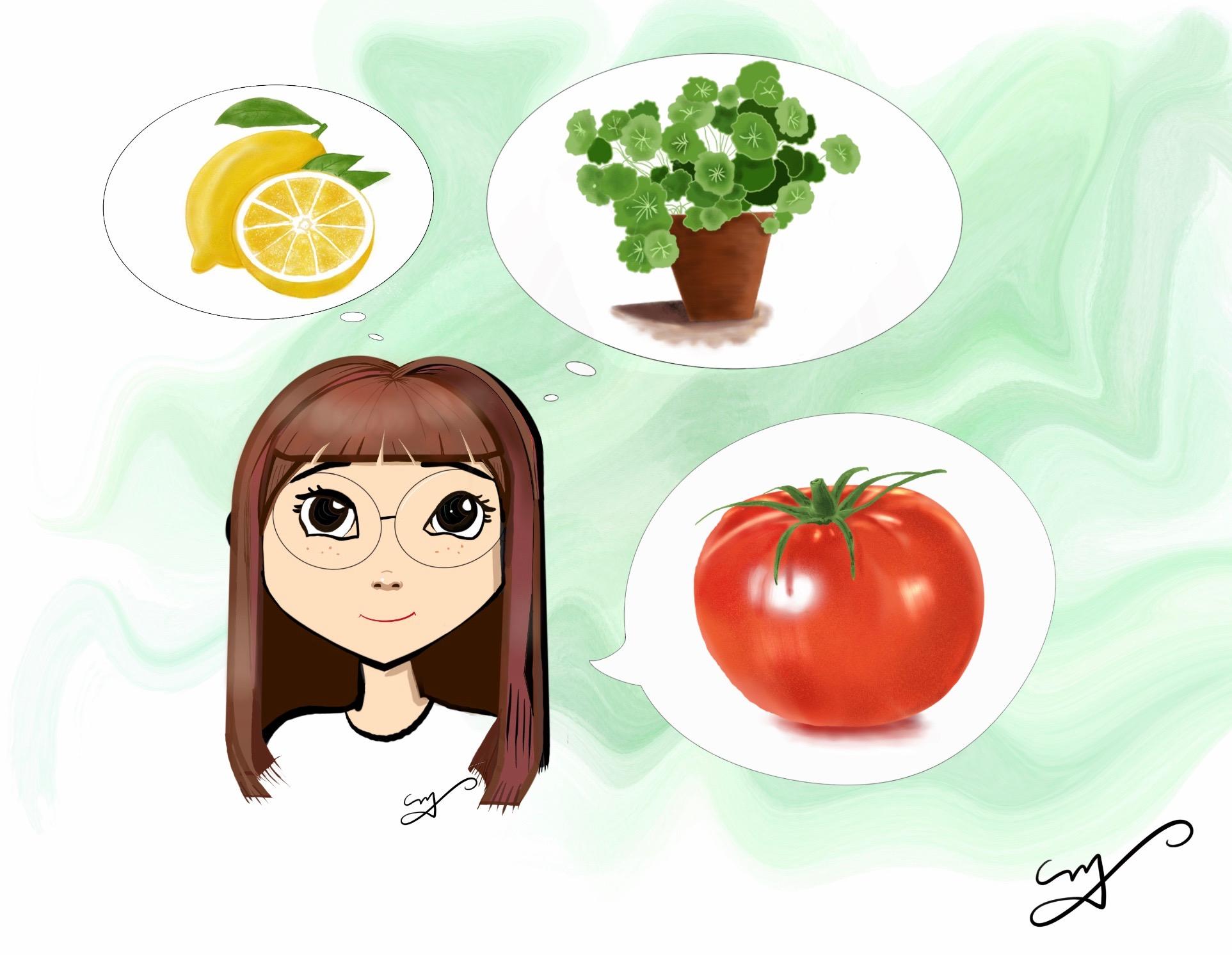 Piel saludable y brillante, tomate, limón, centella asiática