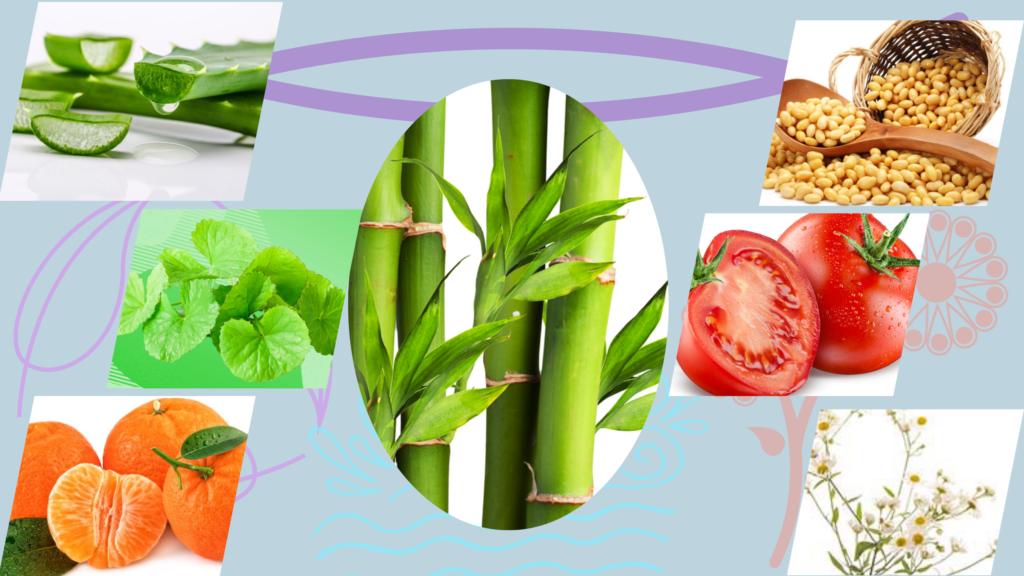 Extractos provenientes de flores, frutas y plantas medicinales